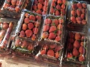 Strawberry per pack harga termurah