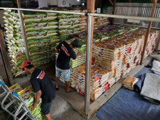 Distributor Suplier Beras Malang