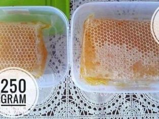Jual Madu murni sarang lebah melifera kemasan 250
