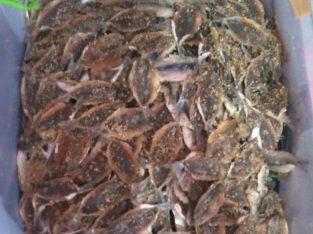 ikan asin kere ikan dendeng 1 kg harga 30000