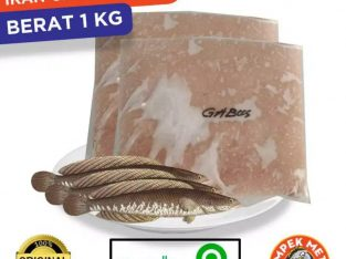 Suplier ikan giling untuk pempek, bakso, siomay