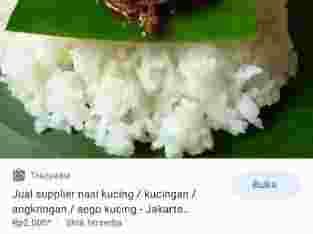 Jual supplier nasi kucing