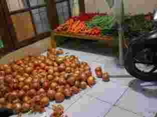 suplayer sayuran dan buah