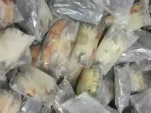 Kepiting soka frozen