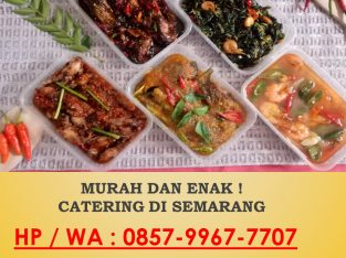 CATERING ENAK DI SEMARANG BARAT, O857-9967-7707