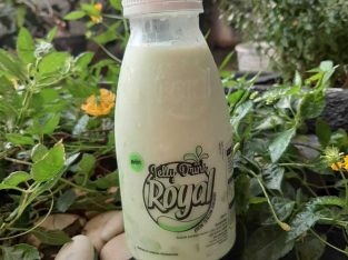Royal Jelly Drink