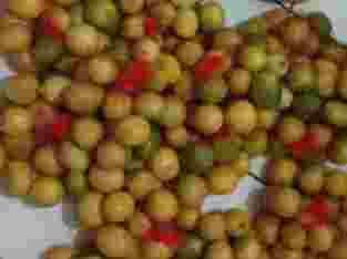 Distributor Lemon segar cuma 15rb 1 kilo