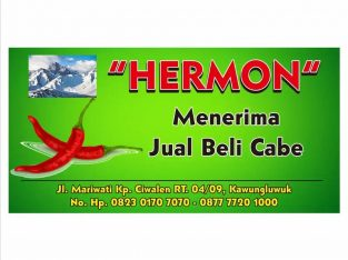 HERMON / Jual beli Cabe Online