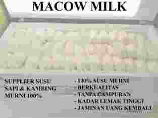 Susu Sapi Murni Berkualitas 100% (MACOW MILK)