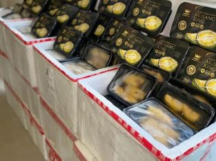 Supplier Durian Musang King MSK Golden Special