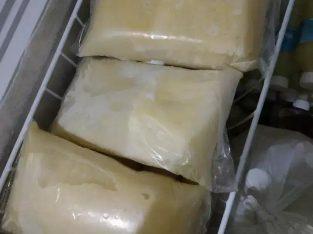 Supplier Susu Sapi Murni dan termurah
