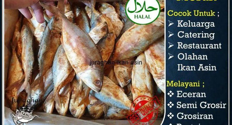 Grosir Jual Ikan Asin Peda Merah