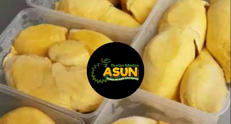 Supplier Agen terbesar Durian montong palu parigi