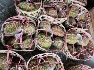 Jual Durian keranjang Sangat Murah