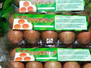 Jual Telur Omega-3 (grosir/eceran)