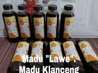 Jual Madu Klanceng Asli Kalimantan