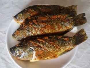 Jual ikan bioflok & sayur hydroponic segar